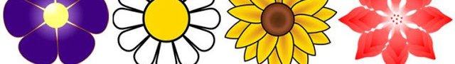 A kiválasztott virág üzenet egy angyaltól – Csodálatos teszt