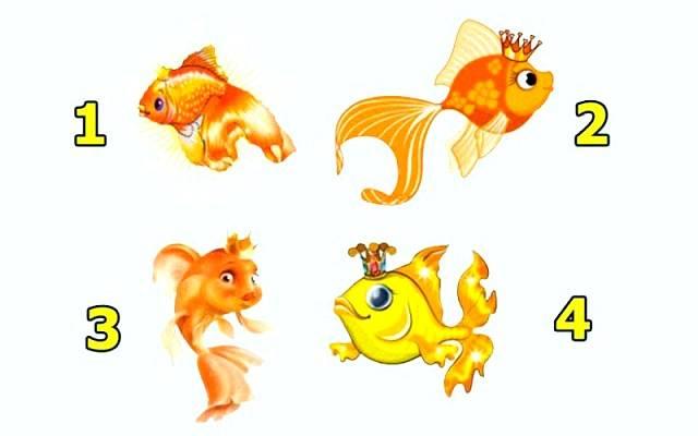 Válassz ki egy aranyhalat és tudd meg mit üzen neked